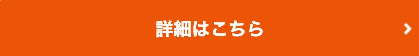 au_公式サイト